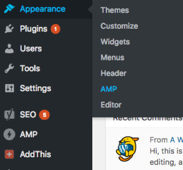 WordPress AMP Plugin Activation
